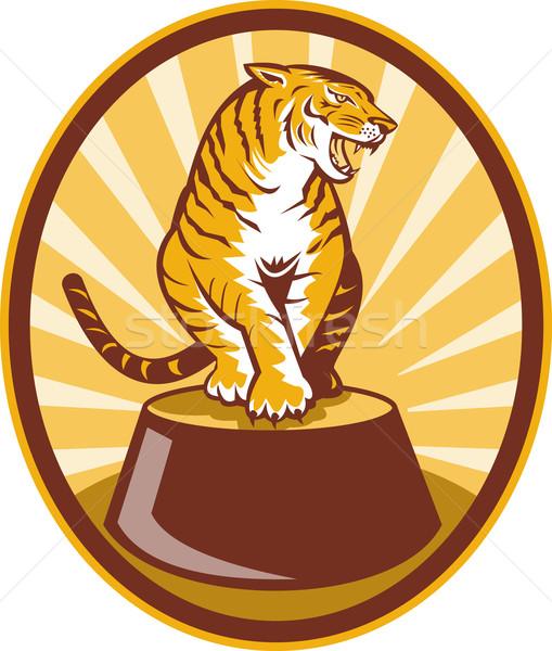 Angry tiger sitting on top of plinth Stock photo © patrimonio
