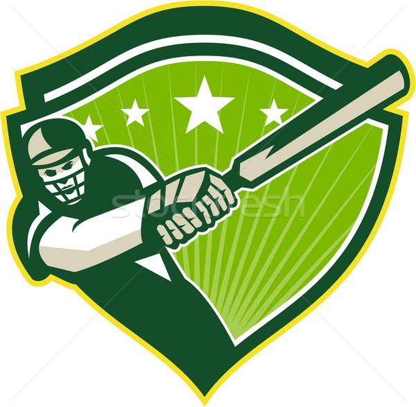 Krikett játékos csillag címer retro illusztráció Stock fotó © patrimonio