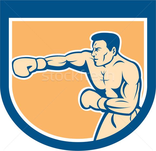 Boxer Boxing Punching Shield Cartoon Stock photo © patrimonio