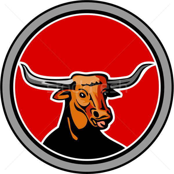Texas Longhorn Red Bull Circle Retro Stock photo © patrimonio