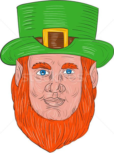 Leprechaun Head Front Drawing Stock photo © patrimonio