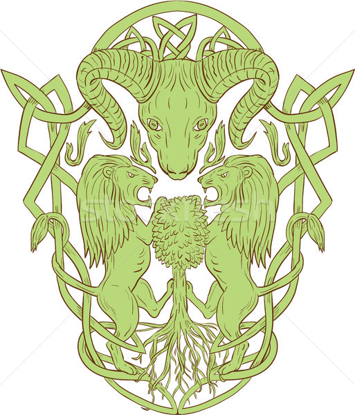 Bighorn Sheep Lion Tree Coat of Arms Celtic Knot Stock photo © patrimonio