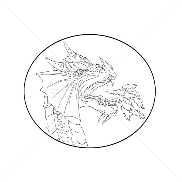 Dragon Fire Circle Drawing Stock photo © patrimonio