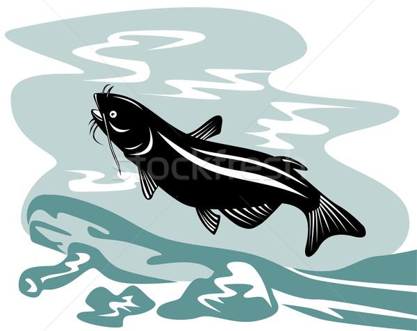 Catfish Jumping Stock photo © patrimonio