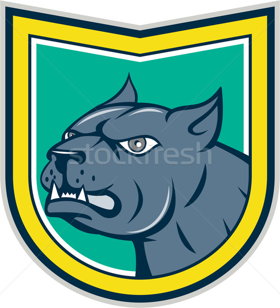 Pitbull Dog Mongrel Head Side Shield Cartoon Stock photo © patrimonio