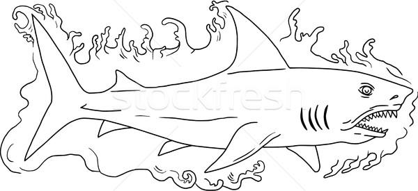Tubarão água lado desenho esboço estilo Foto stock © patrimonio