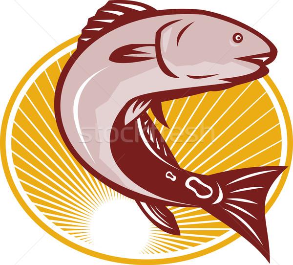 Piros dob folt farok basszus hal Stock fotó © patrimonio