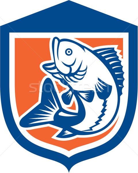 Largemouth Bass Jumping Side View Shield Retro Stock photo © patrimonio