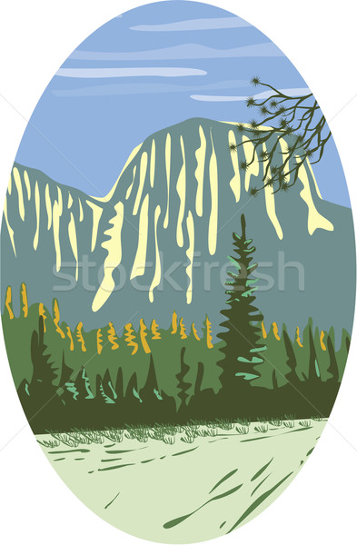 Granit ovale style illustration vertical formation rocheuse Photo stock © patrimonio