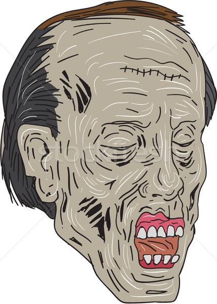 Zombi fej három negyed kilátás rajz Stock fotó © patrimonio