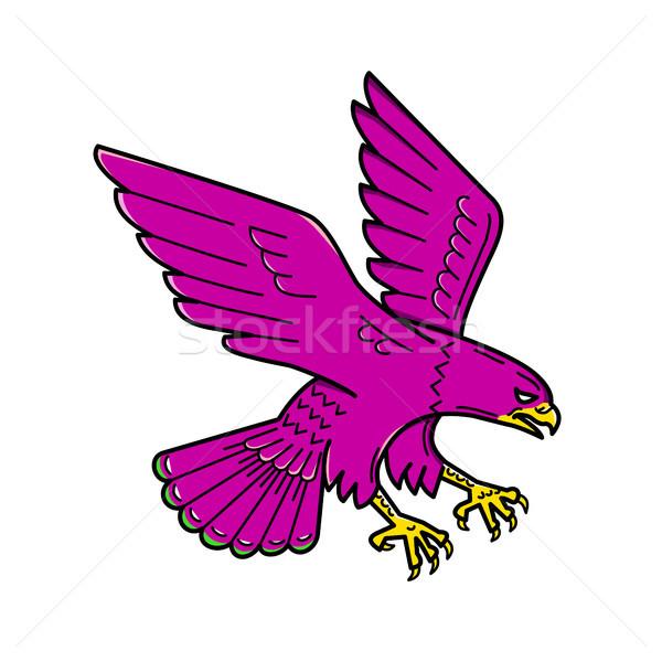 Falcon line illustrazione anatra uccello Foto d'archivio © patrimonio