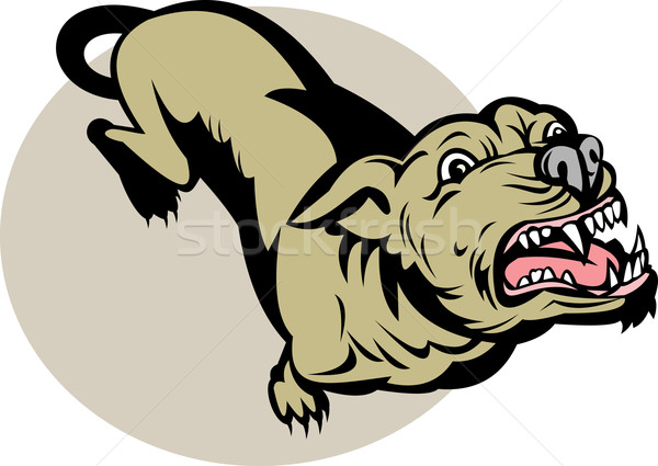Angry Dog barking about to attack  Stock photo © patrimonio