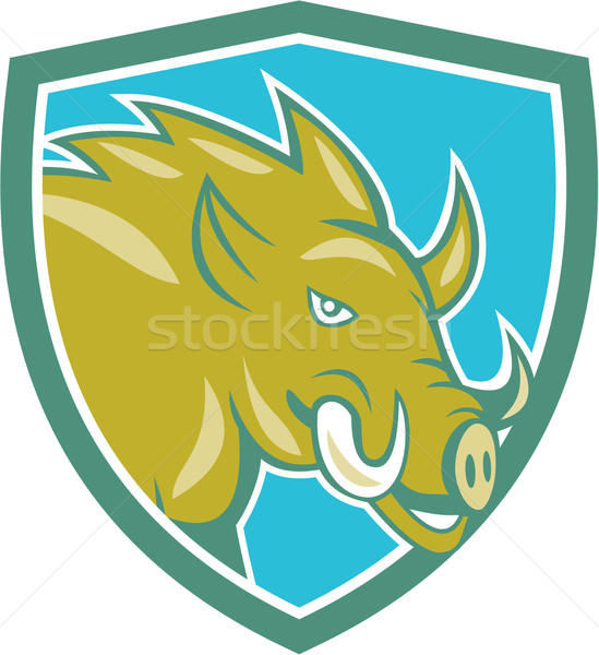 Razorback Head Charge Shield Cartoon Stock photo © patrimonio