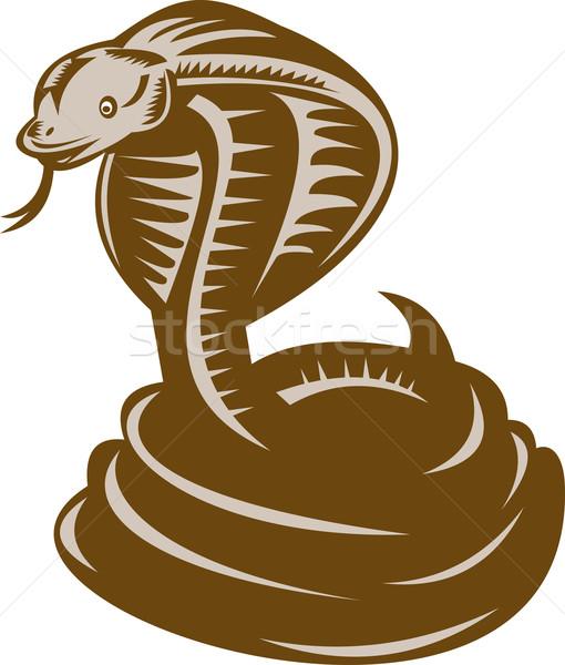 Rei cobra greve ilustração desenho animado Foto stock © patrimonio