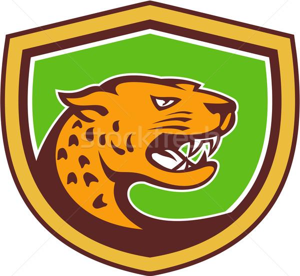 Jaguar kafa yan kalkan Retro örnek Stok fotoğraf © patrimonio