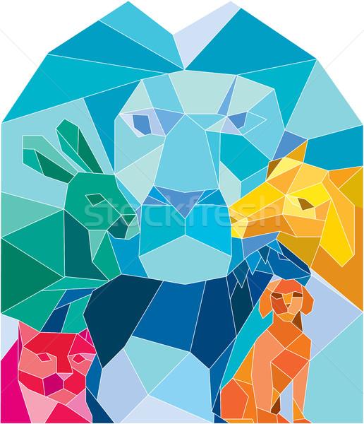 Zdjęcia stock: Lew · królik · kot · konia · psa · koza