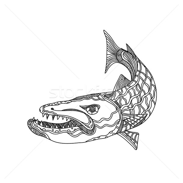 Stock photo: Barracuda Fish Doodle Art