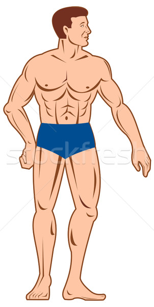 Masculino anatomia humana em pé ilustração homem corpo musculoso Foto stock © patrimonio