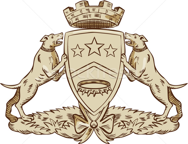 Stock photo: Pitbull Dog Coat of Arms Etching