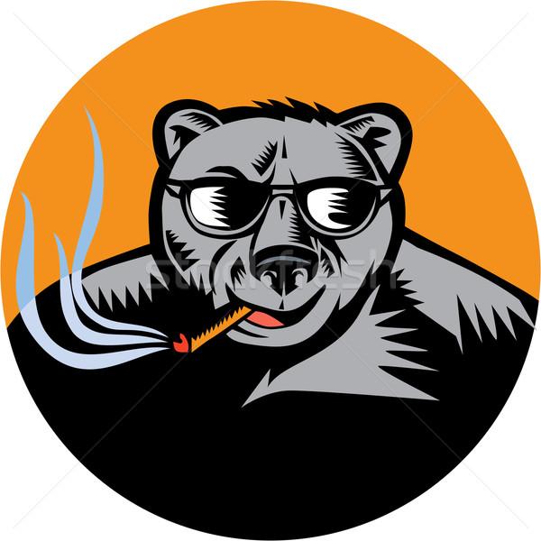 Noir ours lunettes de soleil cigare cercle illustration Photo stock © patrimonio