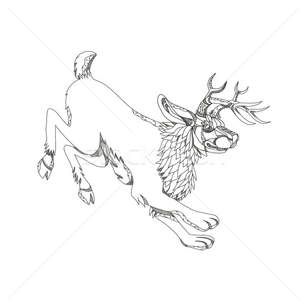 Jackalope Hopping Doodle Art Stock photo © patrimonio