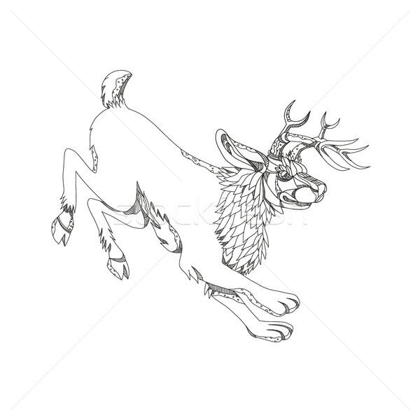 Rabisco arte ilustração mítico animal norte Foto stock © patrimonio