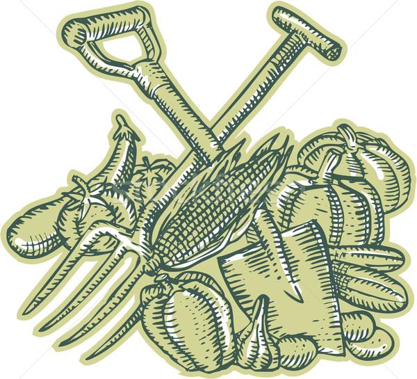 スペード 収穫 彫刻 ハンドメイド スタイル ストックフォト © patrimonio