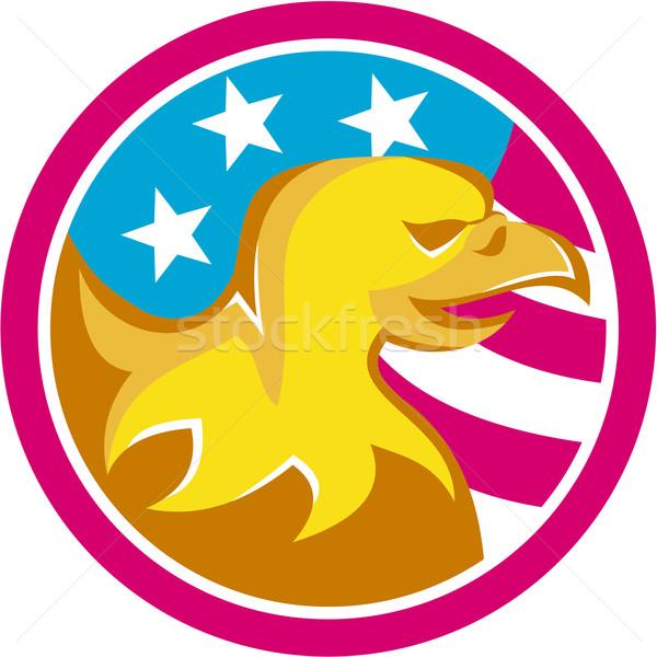 американский лысые орел США флаг круга Сток-фото © patrimonio
