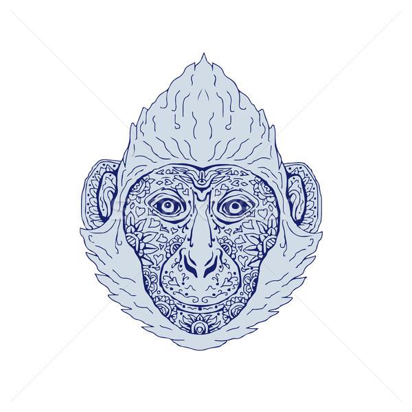 Cat testa mandala illustrazione fronte mano Foto d'archivio © patrimonio
