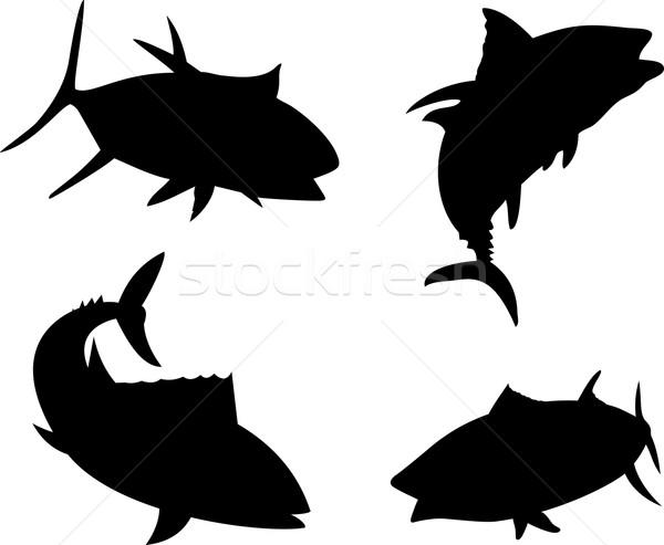 Amarelo barbatana atum peixe silhueta ilustração Foto stock © patrimonio