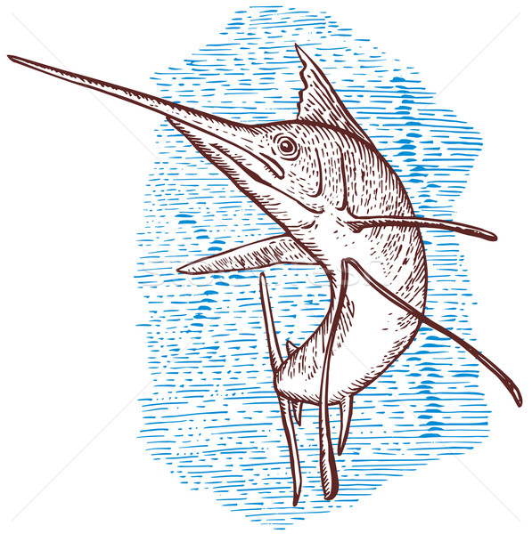 Sailfish Fish Jumping Sketch vector illustration © Aloysius