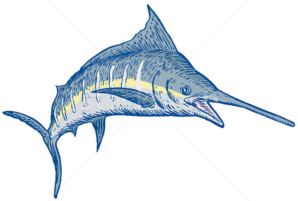Blauw illustratie geïsoleerd witte Stockfoto © patrimonio