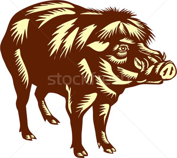 Philippine Warty Pig Woodcut Stock photo © patrimonio