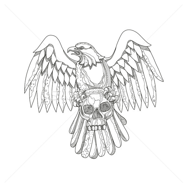 American Eagle Clutching Skull Doodle Stock photo © patrimonio