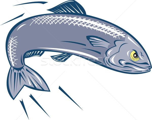 Angry Sardine Fish Jumping Stock photo © patrimonio