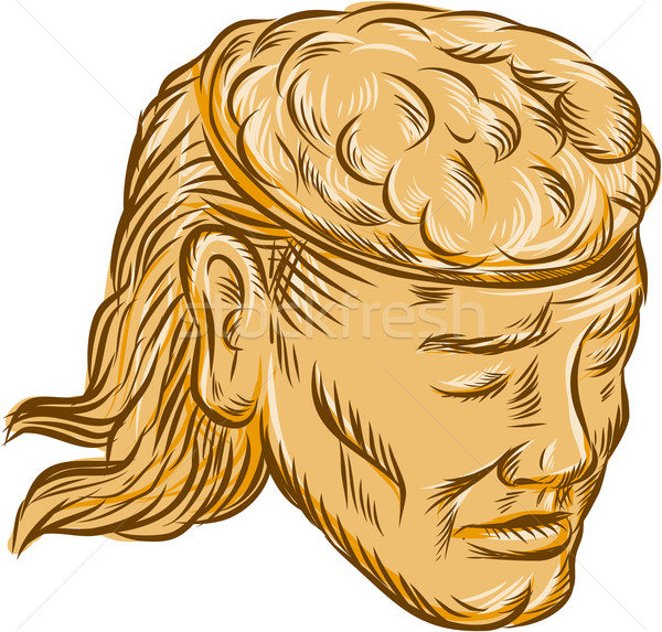 Man Open Head Brain Etching Stock photo © patrimonio