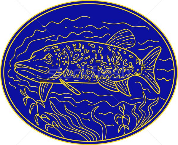 Settentrionale pesce ovale line stile illustrazione Foto d'archivio © patrimonio