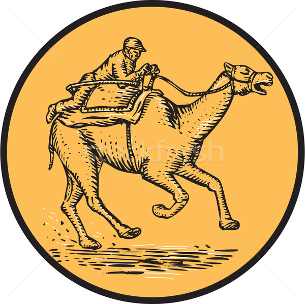 Jockey Camel Racing Circle Etching Stock photo © patrimonio