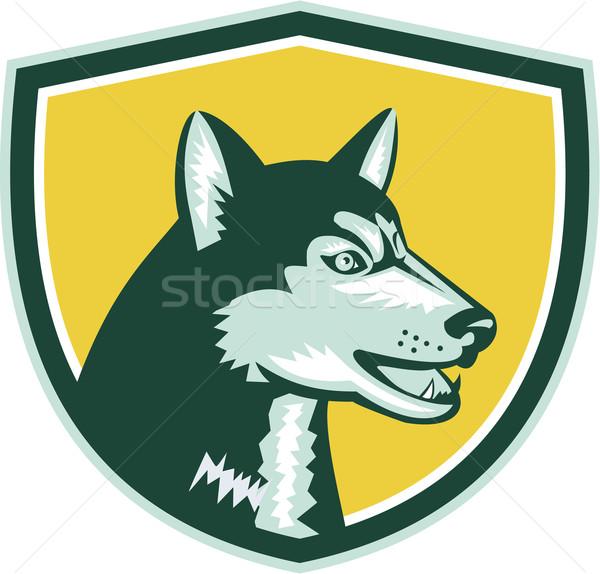 Husky hond hoofd kuif retro illustratie Stockfoto © patrimonio