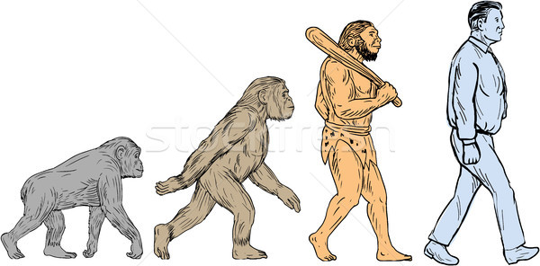 Human Evolution Walking Drawing Stock photo © patrimonio