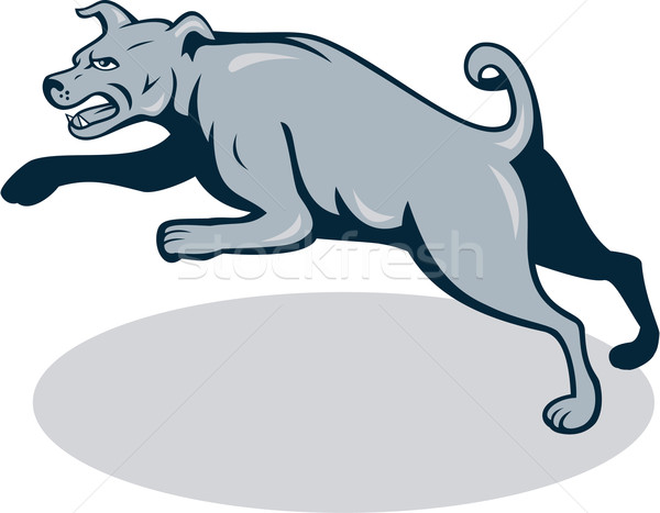 Mastiff Dog Mongrel Jumping Cartoon Stock photo © patrimonio