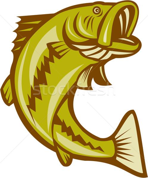 бас прыжки Cartoon иллюстрация рыбы стиль Сток-фото © patrimonio
