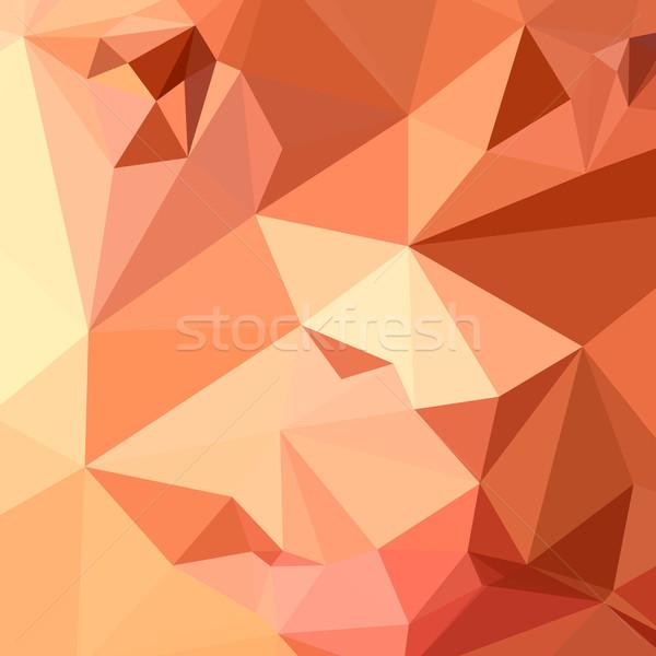 Tango laranja abstrato baixo polígono estilo Foto stock © patrimonio