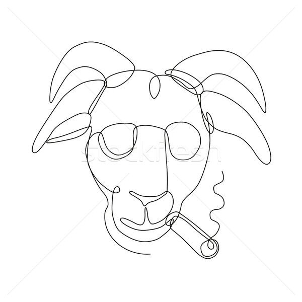 Billy Goat Wearing Sunglasses Cigar Continuous Line Stock photo © patrimonio