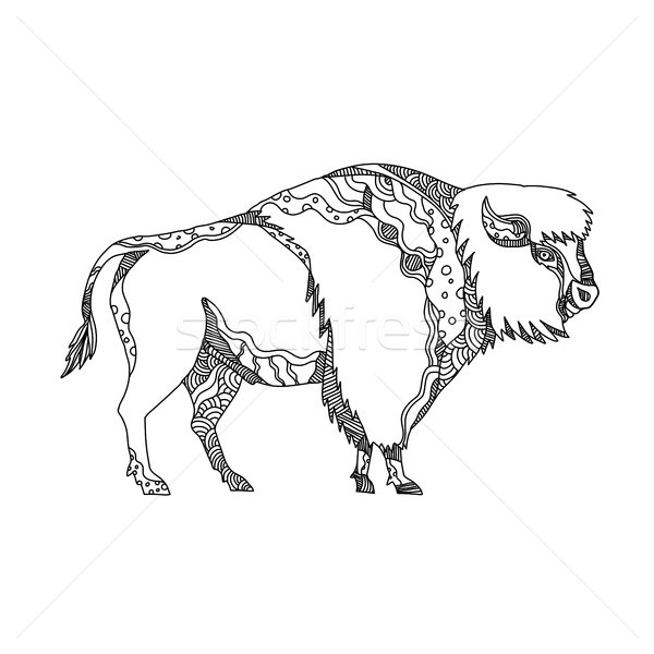 American Buffalo Doodle Art Stock photo © patrimonio