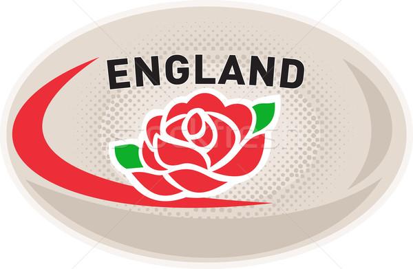 Rugby ball Anglii angielski wzrosła ilustracja kwiat Zdjęcia stock © patrimonio