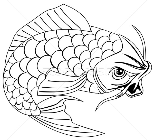 Koi Carp Fish Jumping Line Drawing Stock photo © patrimonio