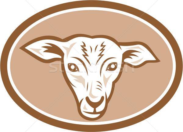 Schapen hoofd ovaal cartoon illustratie lam Stockfoto © patrimonio
