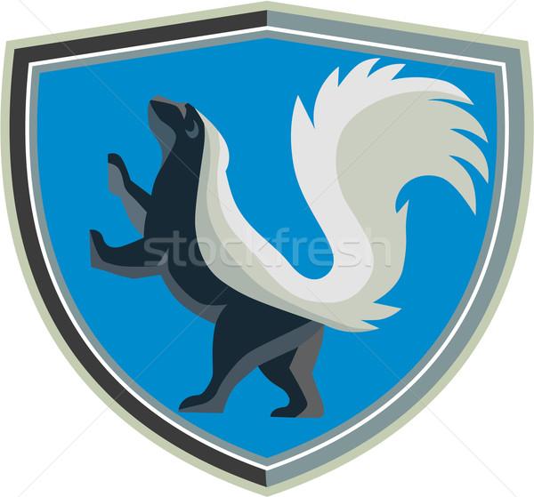 Skunk Prancing Side Crest Retro Stock photo © patrimonio