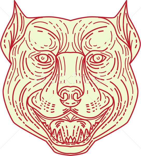 Pitbull Dog Mongrel Head Mono Line Stock photo © patrimonio